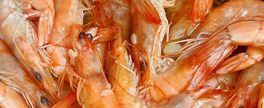 krevety, krevety na česneku, jídlo na palubě, vaříme na plachetnici, food, mořské plody,